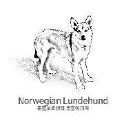 노르웨이언 룬트훈트