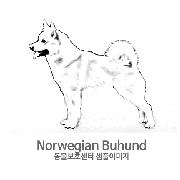 노르웨이언 부훈트