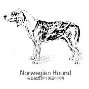 노르웨이언 하운드