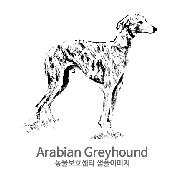 그레이하운드/아라비언 그레이하운드